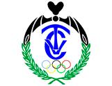 club_tenis_valldigna_valencia_logo (2)
